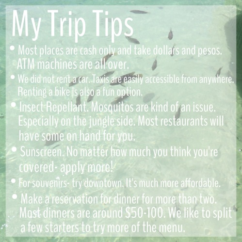 My Travel Tips 1